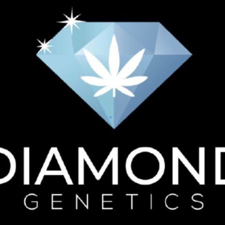 Diamond Rock Genetics